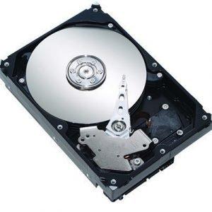 Dell Kiintolevy Serial Ata 1024gb 7200opm