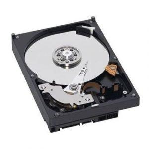Dell Kiintolevy Serial Ata-300 4096gb 7200opm