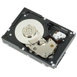 Dell Kiintolevy Serial Attached Scsi 3 6144gb 7200opm