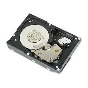 Dell Puolijohdeasema 0.256tb 2.5 Serial Ata-300