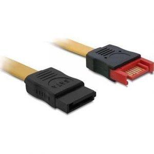 Delock Cable Sata Extension 7 Nastan Serial Ata 7 Nastan Serial Ata Beige 1m