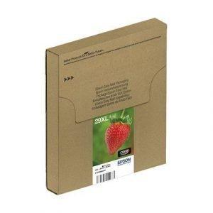 Epson 29xl Multipack