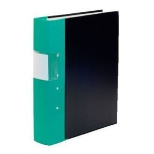 Esselte Fork Binder Wodden Back Budget 60 Mm Green