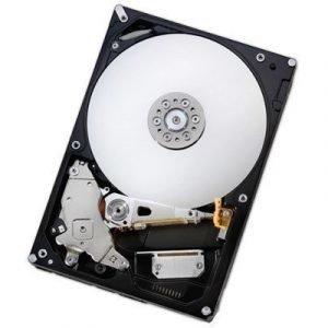 Hgst Idk Deskstar Nas H3iknas40003272se 4tb 3.5 Serial Ata-600