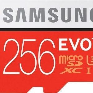 Samsung EVO+ microSDXC 256GB UHS-I (Class 10)