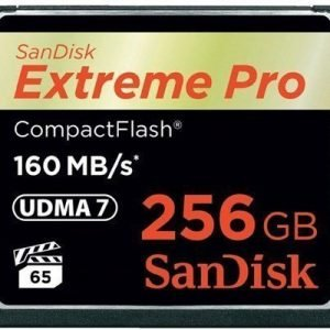 Sandisk Extreme Pro Compactflash 256gb