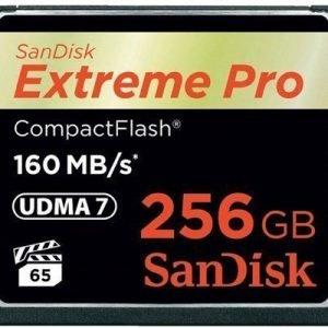 Sandisk Extreme Pro Compactflash 256gb
