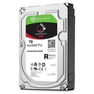 Seagate Ironwolf Pro 3.5 Serial Ata-600