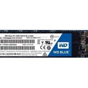 Wd Blue Ssd 250gb M.2 Serial Ata-600