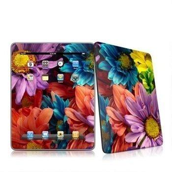 iPad Colours Skin