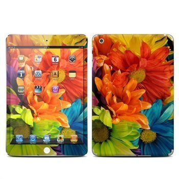 iPad Mini Colours Skin